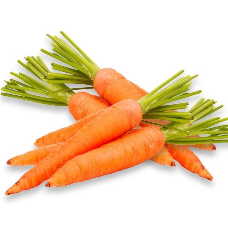plantas-web-ok-Carrot.jpg