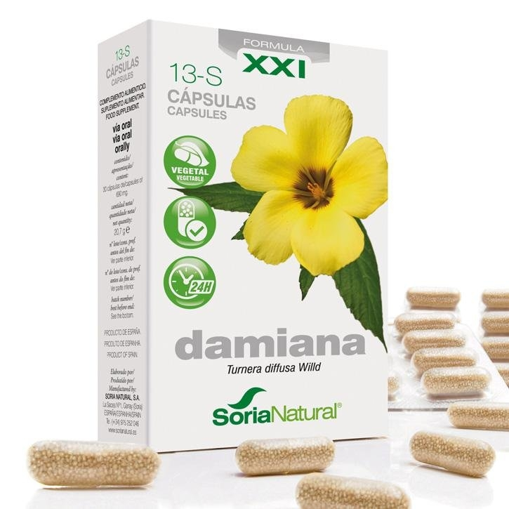 13-S Damiana - Caps. XXI