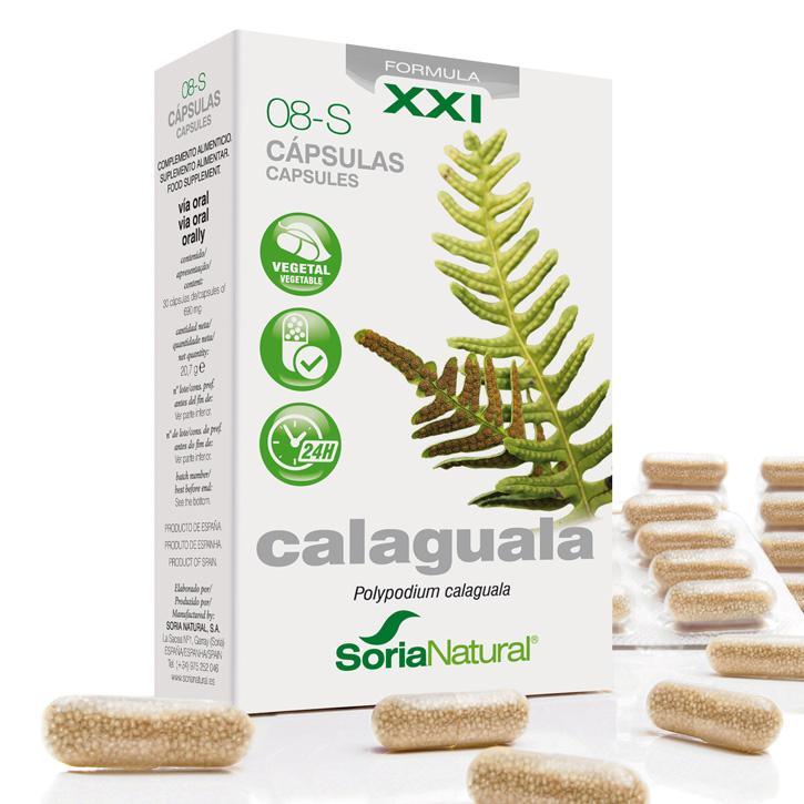08-S Calaguala - Caps. XXI