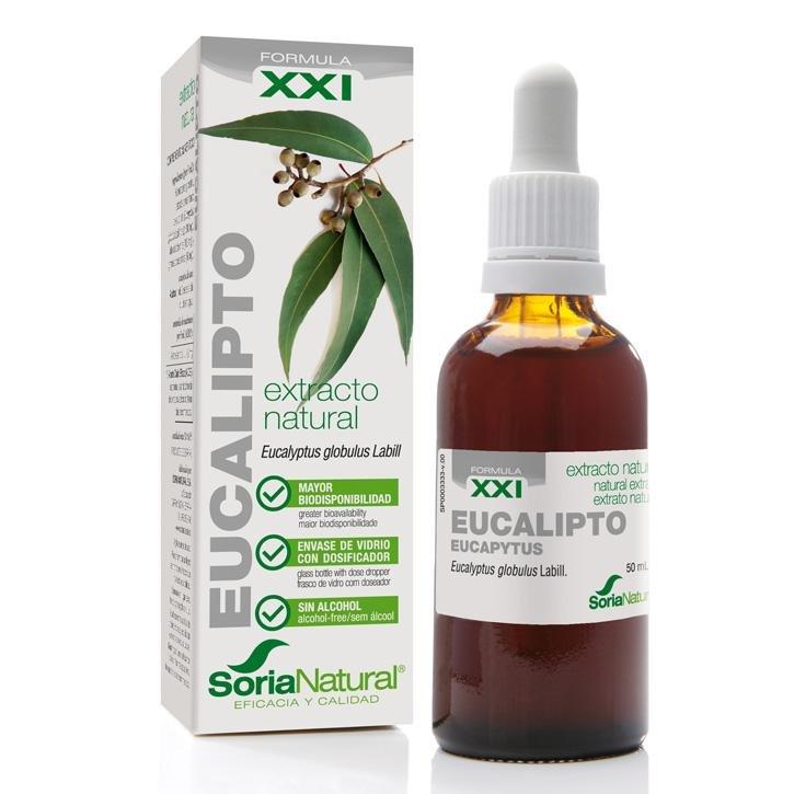 Eucalyptus Extract XXI